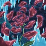 Rose Blizzard