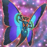 Morpho Butterspy